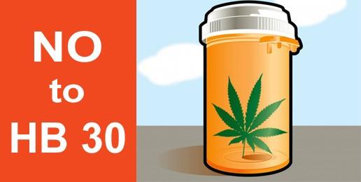 "Veto Session: ""Medical"" Marijuana in the Land of Lincoln?"