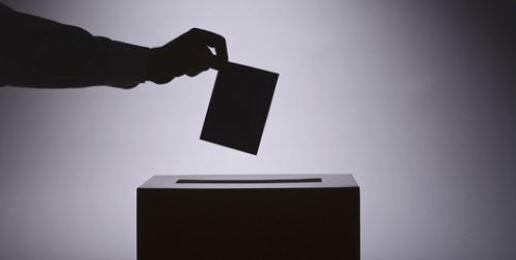Ballot Questions: Constitutional Amendments & Referenda