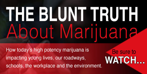 The Blunt Truth About Marijuana