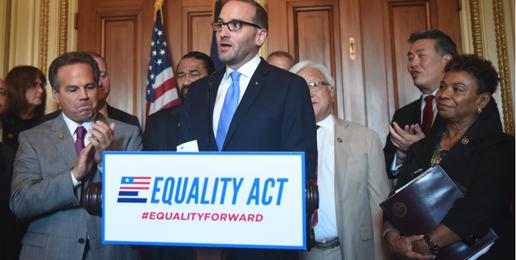 La Perversion Llamada La Ley de Igualdad