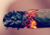 Former Drug Addict Opposes Marijuana Legalization [VIDEO]