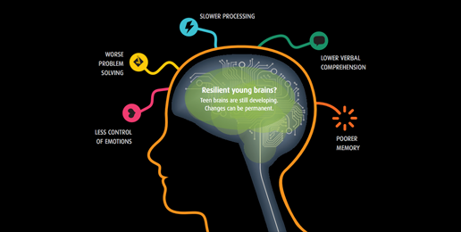 White Paper: Marijuana Use Causes Brain Damage in Teens