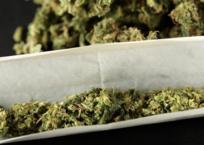 Marijuana Decriminalization Happening in Congress
