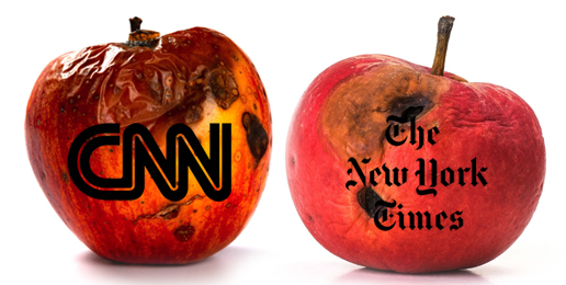 Decay of CNN & NYT Irreversibly Damaging Journalism